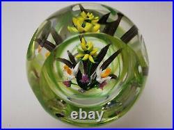 Great ALLAN SCOTT Citron Bouquet 1/1 Glass Paperweight