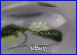 Large BEAUTIFUL Paul STANKARD Water LILIES Art GLASS Paperweight