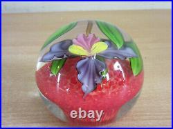 Mayauel Ward 2012 Signed studio art glass paperweight Iris flower PW 44VOS