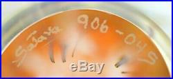 Mesmerizing RICK SATAVA Pacific Coast JELLYFISH Art Glass SCULPTURE Paperweight