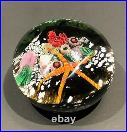 Peter Raos PAPERWEIGHT 1996 New Zealand Art glass UNDERWATER SCENE series -Your