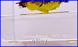 Spectacular PAUL STANKARD Honey Bee MASK Botanical ART Glass PAPERWEIGHT Cube