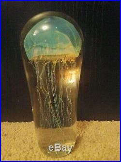 Studio Art Glass Sculpture Rick Satava Large 8 Passion Moon Jellyfish